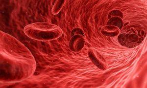 Анализ на группу крови и резус фактор