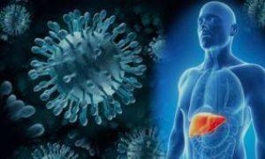 Анализы, диагностика вирусных гепатитов D, E, G