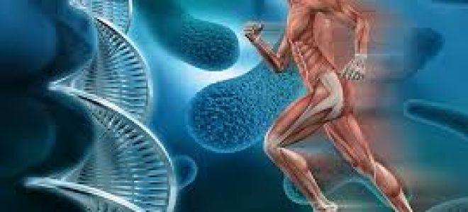 Генетические исследования, виды генетических анализов