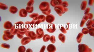biohimiya-krovi