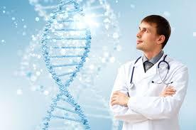 struktura DNK