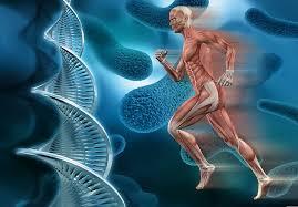 Sekrety DNK cheloveka