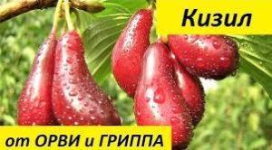 kizil
