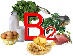 vitamin V2